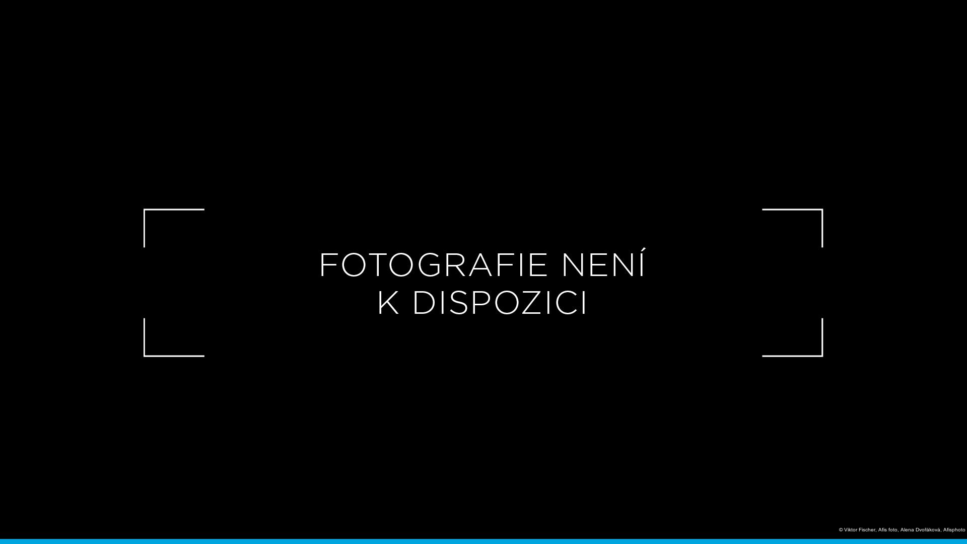 Viktor Fischer, Afis foto, Alena Dvořáková, Afisphoto