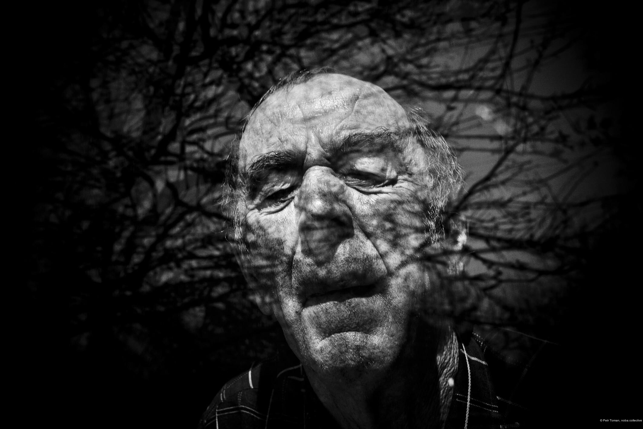 Petr Toman, noba.collective