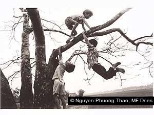 Nguyen Phuong Thao, MF Dnes
