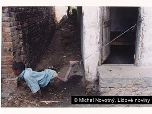 Michal Novotný, Lidové noviny