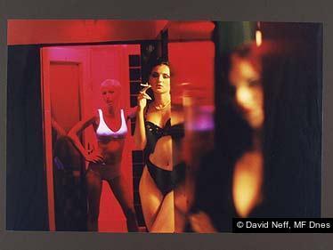 David Neff, MF Dnes