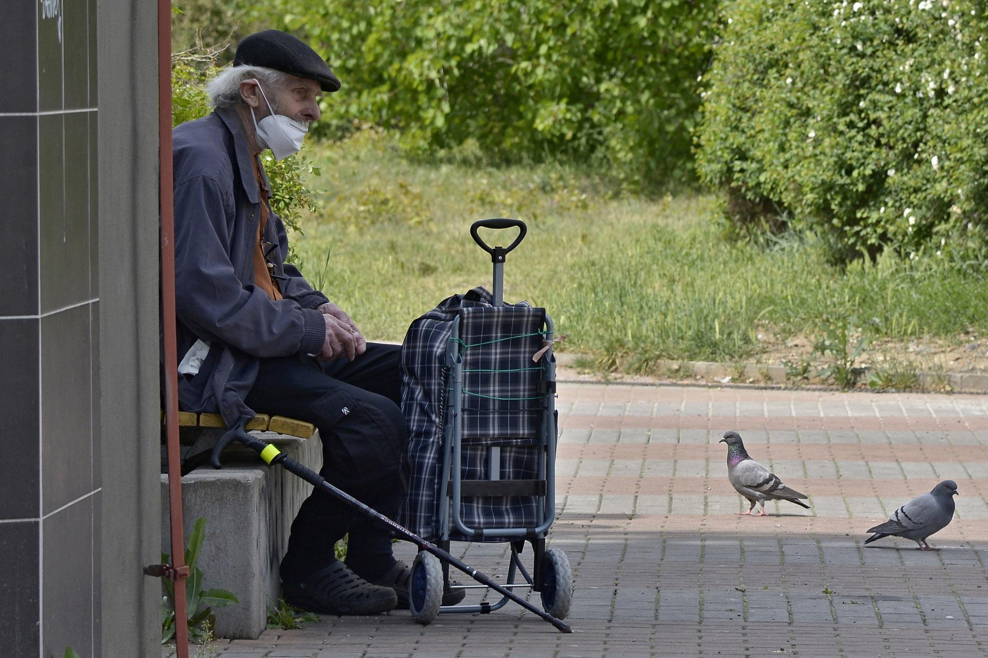 Martin Salajka – Krmení holubů