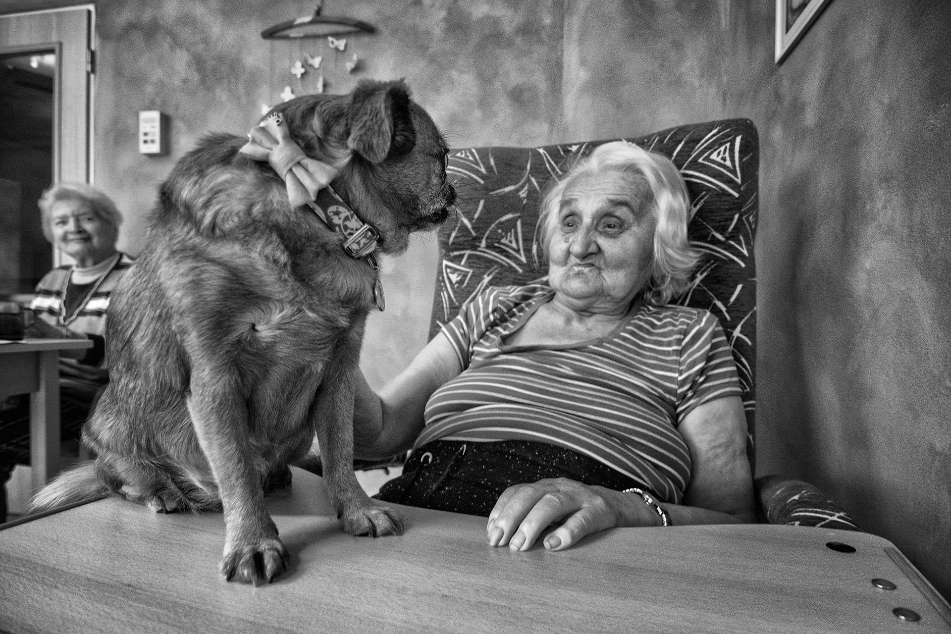[CPC/deti4_jirkovsky-jan_186_canis-terapie-v-domove-knezny-emmy_006.jpg]