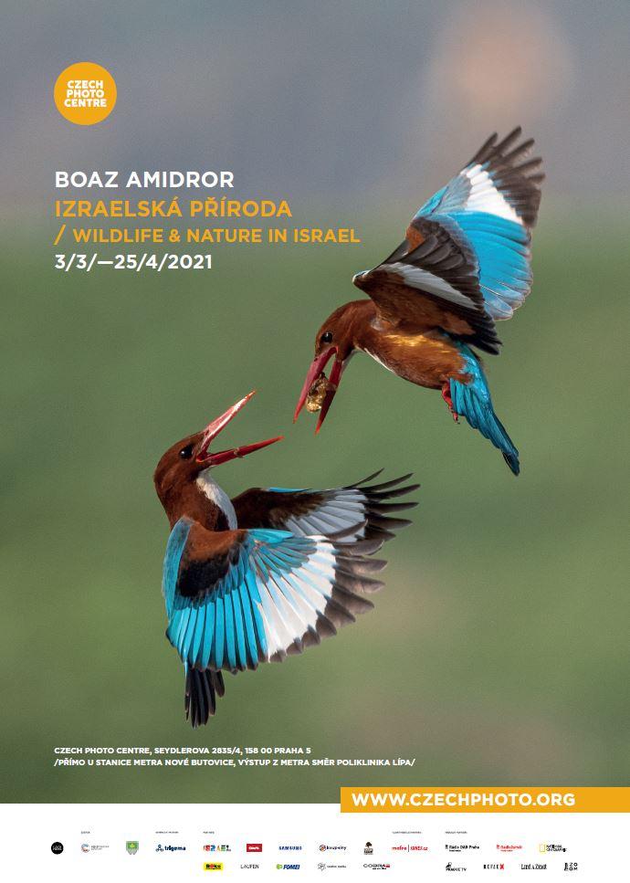Boaz Amidror