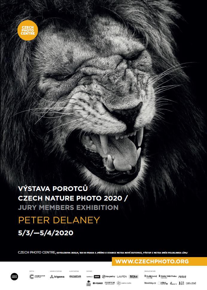 CNP 2020